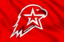 Флаг Юнармия