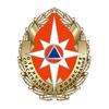 Нагрудный знак «Отличник спасательных воинских формирований» МЧС РФ