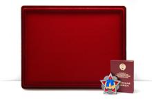 Планшет для наград с поролоновой вставкой, без ячеек (29 см х 39 см)