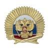 Знак с накладным гербом Учащегося кадетского корпуса