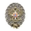 Знак «Об окончании Академии ГПС МЧС России», образец 2005 г.