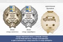 Общественный знак «Почётный житель города Боровичей Новгородской области»