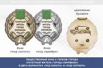 Общественный знак «Почётный житель города Ефремова Тульской области»