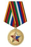 Медаль МО РФ «Совместное стратегическое учение Запад-2017»