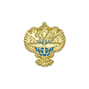 Знак на лацкан «Герб Росавиации»