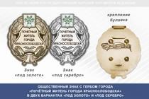 Общественный знак «Почётный житель города Краснослободска Республики Мордовия»