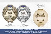 Общественный знак «Почётный житель города Островного Мурманской области»