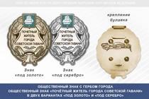 Общественный знак «Почётный житель города Советской Гавани Хабаровского края»