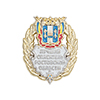 Знак «Лучший спасатель Ростовской области» с бланком удостоверения