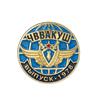 Знак «40 лет выпуску ЧВВАКУШ»
