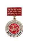 Медаль на колодке «За помощь в развитии каратэ SKIF»