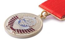 Удостоверение к награде Медаль «Родившемуся в СССР» с бланком удостоверения