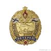 Знак «Ветеран морской пехоты»