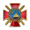 Знак двухуровневый «95 лет авиации ВМФ России»