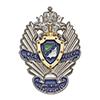 Знак «Институт ФСБ России г. Новосибирск»