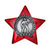 Орденский знак «Участник боевых действий СССР» с бланком удостоверения