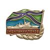 Знак «За дальний поход 2019» надводный флот