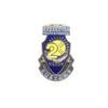 Знак «20 лет таможне Республики Казахстан»