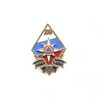 Знак «20 лет МЧС России»