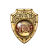 Знак «За борьбу с коронавирусом» с бланком удостоверения