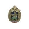 Знак «РТВ ВВС России»