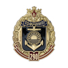 Знак «290 лет ТОФ»