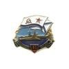 Знак «80 лет Северному флоту ВМС России»