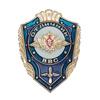 Знак «Отличник ВВС России»