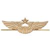 Эмблема (кокарда) ВВС/ВКС на тулью фуражки, нового образца