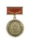 Медаль «Ветеран. 95 лет ФСБ России»