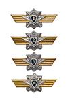 Знак классности ВС РФ (для контрактников)