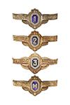 Знак классности ВС РФ, рядовой состав