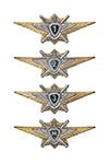 Знак классности ВС РФ, офицерский состав, нового образца