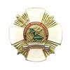 Знак «Участник боевых действий в Дагестане»