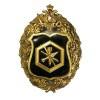 Знак отличия «За доблесть при хранении и уничтожении химического оружия»