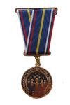 Медаль «За заслуги в проведении Всероссийской переписи населения 2010 года»