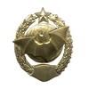 Знак «Спецназ вооруженных сил»