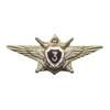 Нагрудный знак МО России «Классный специалист» III класса старого образца