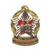 Знак «Ветеран погранвойск СССР» (с просветами)