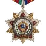 Орден Дружбы народов, муляж