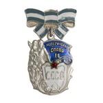 Орден Материнская Слава II степени, муляж