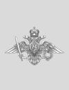 Архив знаков «Вооруженные силы»