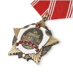 Удостоверение к награде Орден «За личное мужество», муляж (вид 2)