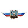 Должностной знак начальника Военной академии Генерального штаба Вооруженных Сил РФ №8