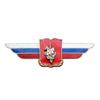 Должностной знак начальника военной академии (военного университета) №9