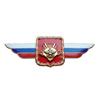 Должностной знак командующего войсками Восточного военного округа №14