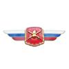 Должностной знак командующего армией, командира армейского корпуса (Сухопутные войска) №17