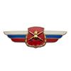 Должностной знак командира дивизии и ей равного соединения (Сухопутные войска) №18