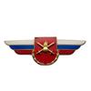 Должностной знак командира бригады к ей равного соединения (Сухопутные войска) №19