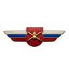 Должностной знак командира отдельного батальона, воинской части (Сухопутные войска) №21
